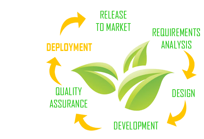 Agile SCRUM Deployment
