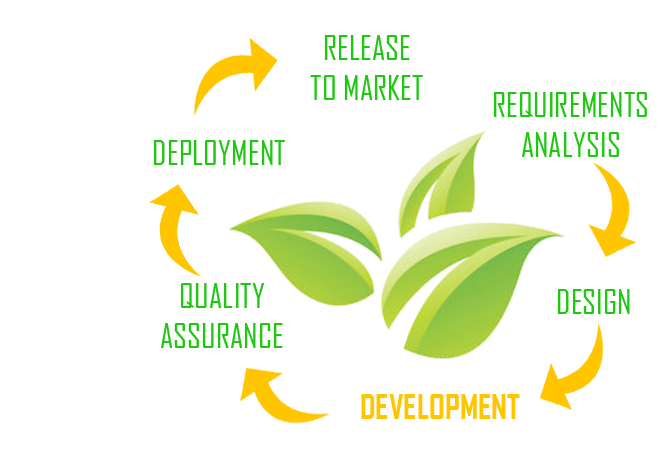 Agile SCRUM Development
